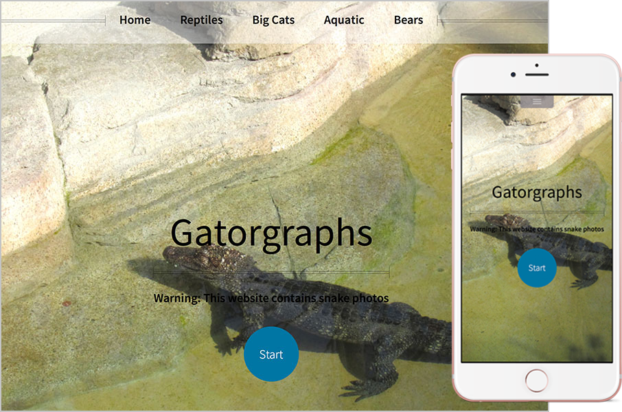 GatorGraphs.com Website